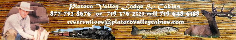 [Platoro Valley Lodge & Cabins]